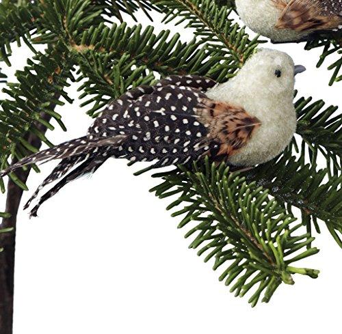 Sage & Co. EAN11871 Chickadee Bird Clip