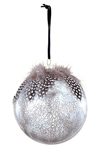 Sage & Co. XAO13841PL Glass Ball with Feather Ornament, 4.75-Inch