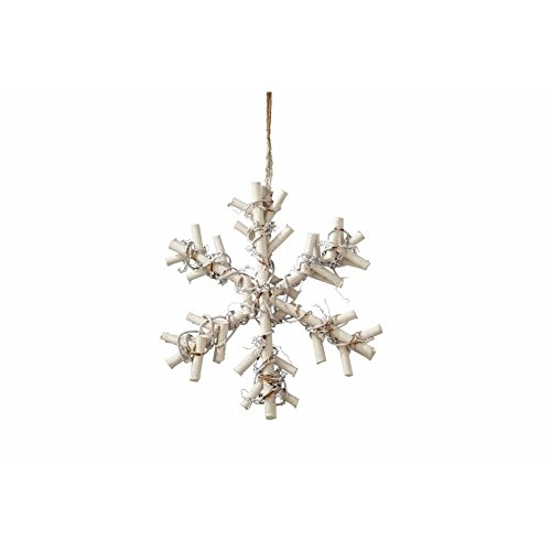Sage & Co. XAN17522WH Frosted Twig Snowflake Ornament, 9-Inch