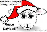 Funny Christmas Joke – Sheep
