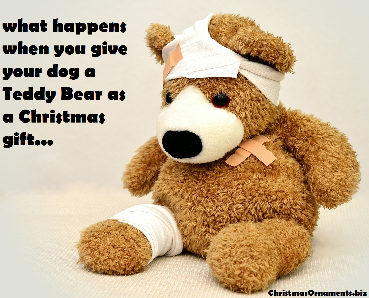Teddy Bear Meme – Dog's Christmas Gift