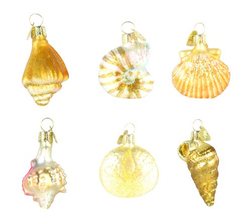 Old World Christmas Assorted Sea Shell Set of 6, 2″ Glass Ornaments