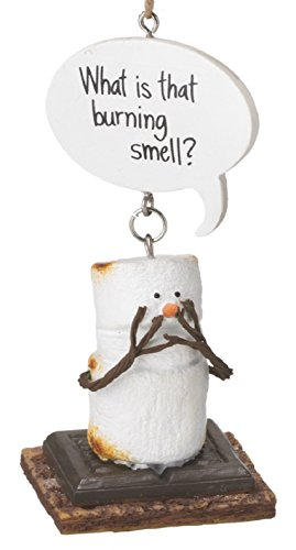 S'mores What Is That Burning Smell Marshmello Ornament