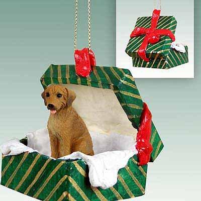 Conversation Concepts Rhodesian Ridgeback Gift Box Green Ornament