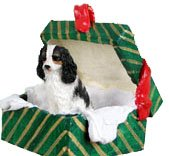 Cavalier King Charles Spaniel Green Gift Box Dog Ornament – Tri