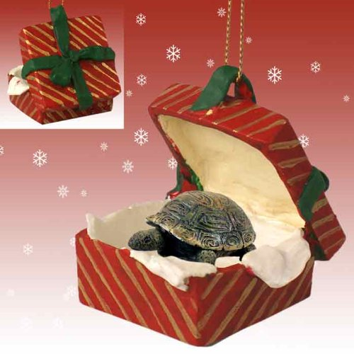 Conversation Concepts Turtle Gift Box Red Ornament