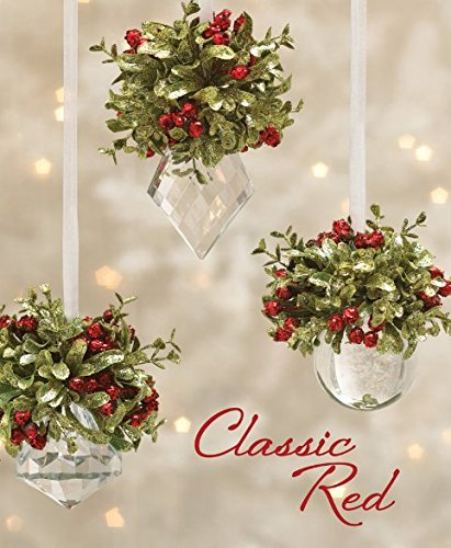 Kissing Krystals Acrylic Mistletoe Hanging Ornament- Assorted Shapes