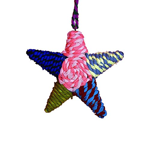 Sage & Co. XAO14719 Chindi Star Ornament, 7-Inch