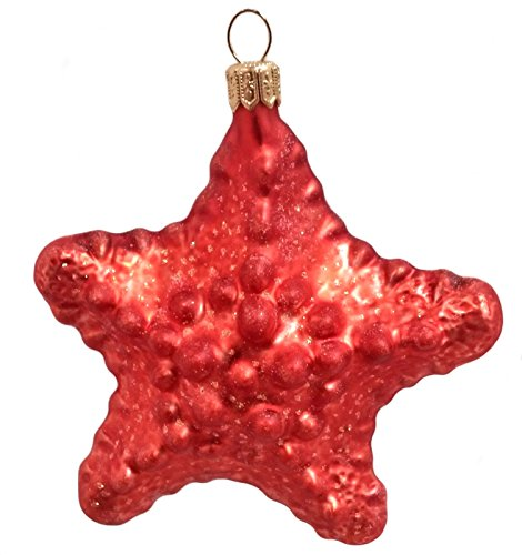 Red Starfish Sea Life Polish Mouth Blown Glass Christmas Ornament