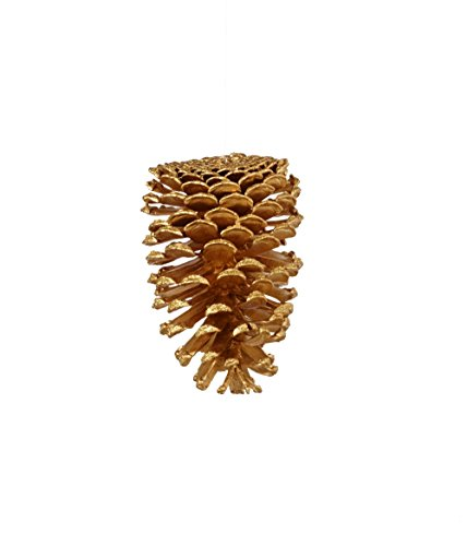 Sage & Co. XAO17410GD Pinecone Ornament, 5-Inch