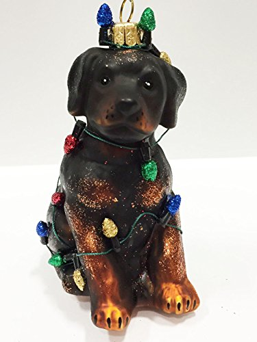 Ornaments to Remember: ROTTWEILER (Christmas Lights) Christmas Ornament