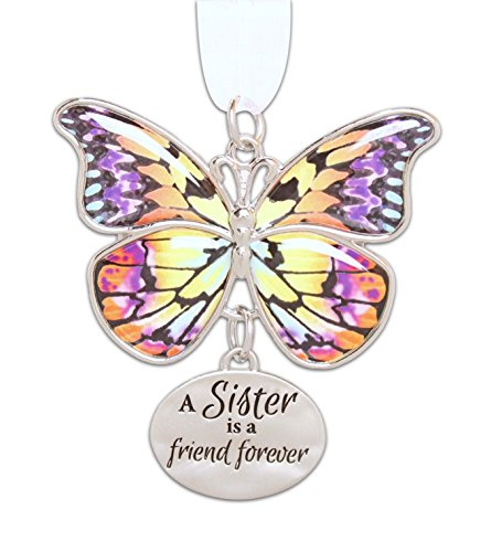 Ganz 2″ Beautiful Zinc Butterfly Ornament with Sentiment Featuring White Organza Ribbon for Hanging (Sister)