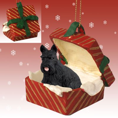 Conversation Concepts Scottish Terrier Gift Box Red Ornament
