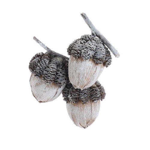 RAZ Imports – Natural Fiber Acorn Cluster Ornament 11″