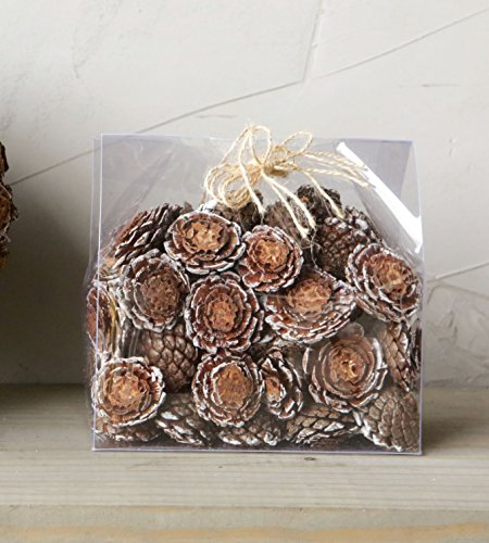 Box of 75 Assorted Flower Cut Decorative Frosted Pinecone Pieces