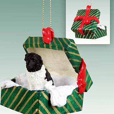 Conversation Concepts Landseer Gift Box Green Ornament