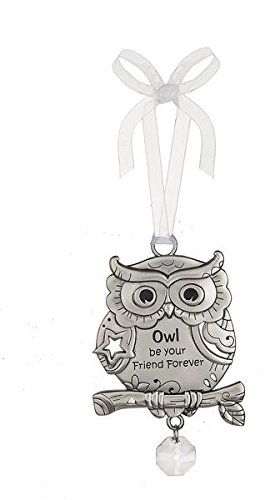 Owl Be Your Friend Forever – Beautiful Blessings Owl Ornament by Ganz