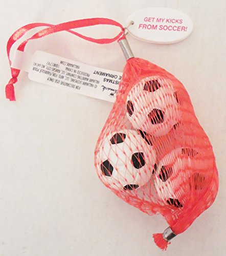 Hallmark 'Get My Kicks From Soccer!' Hanging Ornament With 3 Mini Soccer Balls DIR1797