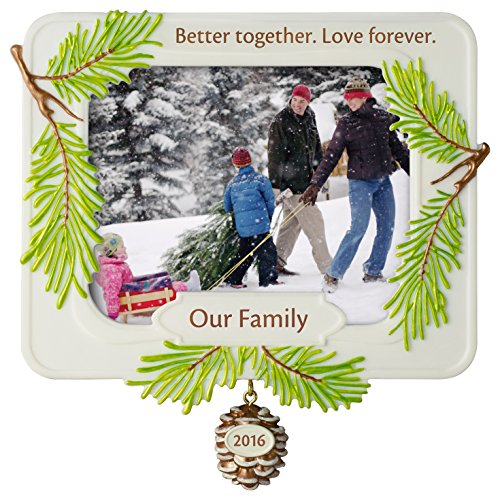Family Christmas Ornament Better Together Dated 2016 Hallmark Keepsake Ornament