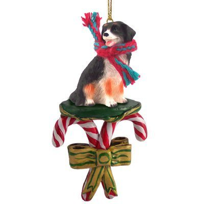 Bernese Mountain Dog Candy Cane Christmas Ornament by Conversation Concepts