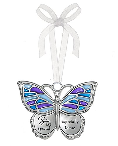 Ganz Home Decor Spring Butterfly Wishes Ornaments – You Are Special