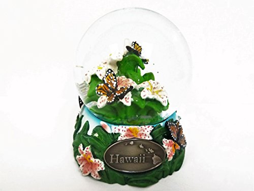 Hawaii Snow Globe 65mm