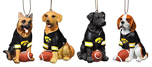 Team Dog Ornaments, 4 Assort., University of Iowa