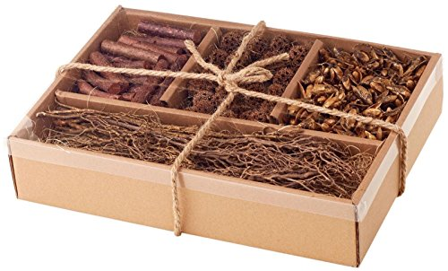 Sage & Co. Pods & Stick Mixed Box
