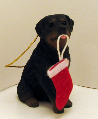 Sandicast Rottweiler With Red Christmas Stocking Ornament