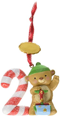 Hallmark 2014 I Am Two Age Series Ornament