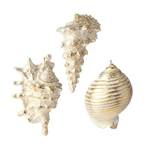RAZ Imports – Coastal Christmas – 4″ Gold Dusted Seashell Ornaments – Set of 3