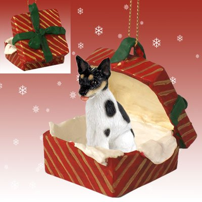 Conversation Concepts Rat Terrier Gift Box Red Ornament
