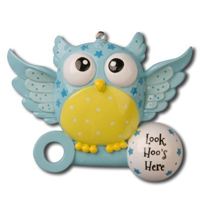 8379 Baby Owl Blue Hand Personalized Christmas Ornament by Polar X