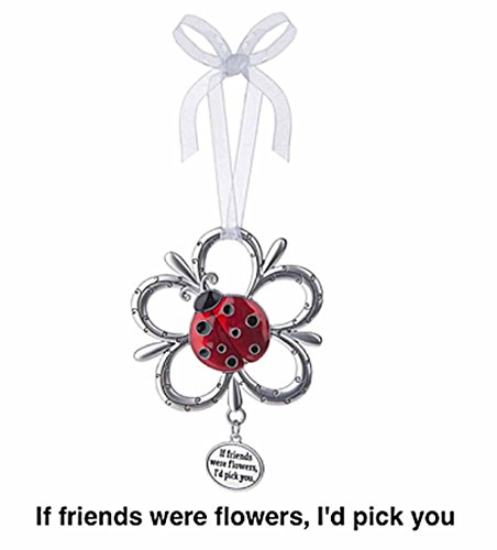 LadyBug Ornament – If friends were flowers, I'd pick you by Ganz