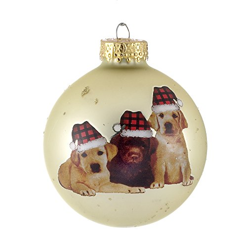 Kurt Adler 80mm Dog Design Glass Ball Ornaments, 3-Piece Box Set