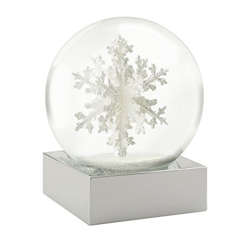 Snowflake Cool Snow Globe by CoolSnowGlobes
