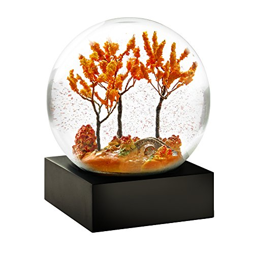 Autumn Cool Snow Globe by CoolSnowGlobes