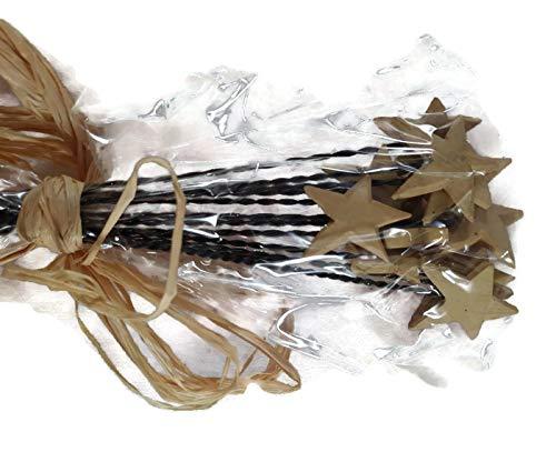 Blossom Bucket Decorative Stars on Metal Sticks – 12 Pack