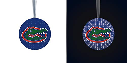 Team Sports America University of Florida Stargazing Team Logo Matching Ornaments 2-Piece Set
