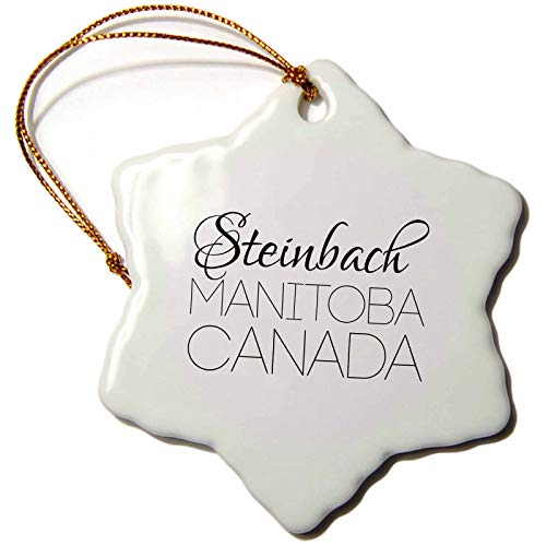 3dRose Alexis Design – Canadian Cities – Steinbach, Province Manitoba, Canada. Patriot Home Town Gift – 3 inch Snowflake Porcelain Ornament (ORN_304254_1)