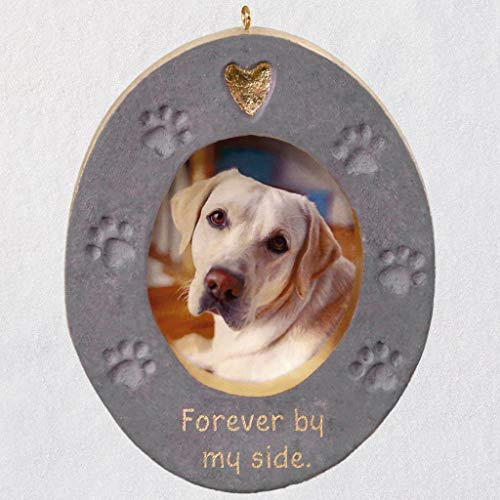 Hallmark Keepsake 2019 Forever by My Side Pet Memorial Concrete Photo Frame Ornament