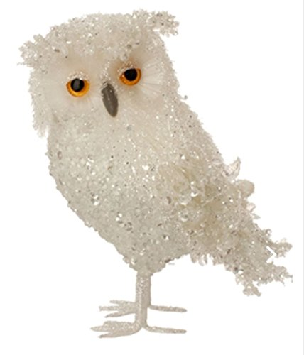 Raz Buyer Choice! ICY White 7″ Glittered Owl with Wide Eyes and Beak Gift Boxed (White (Facing Left))