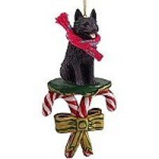 Schipperke Candy Cane Ornament by Conversation Concepts