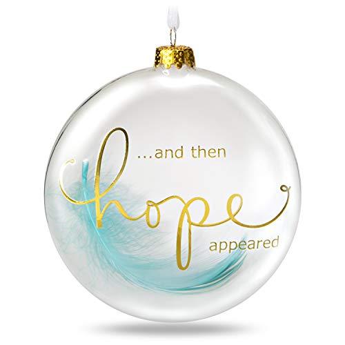 Hallmark Keepsake 2019 Hope Appeared Feather Glass Ornament