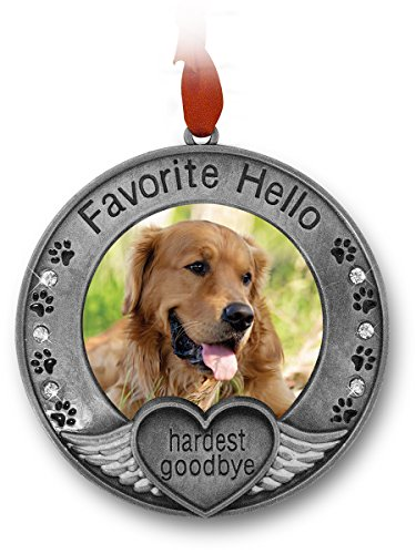 BANBERRY DESIGNS Pet Memorial Ornament – Picture Ornament for a Pet – Engraved with The Saying Favorite Hello, Hardest Goodbye – Pet Remembrance