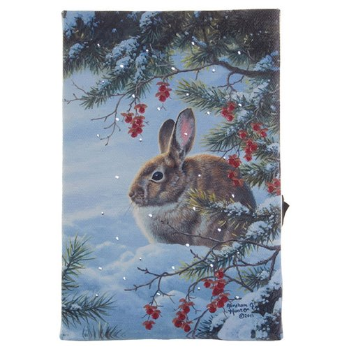 RAZ IMPORTS INC Rabbit Lighted Print Ornament