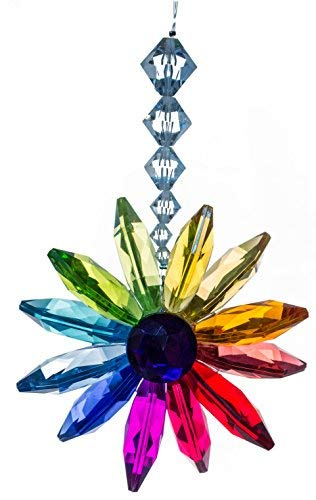 Crystal Expressions 8 Inch Rainbow Floral Burst Ornament