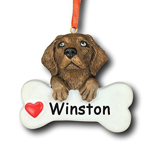 Rudolph and Me Personalized Chocolate Labrador Retriever Dog Christmas Tree Ornament Gift for Pet Featuring Dog Bone with Red Heart Detail – Customized with Your Dog's Name