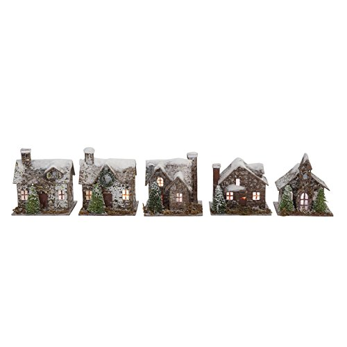 Creative Co-op Snow Flocked Paper & Birch Bark Buildings with LED Lights (Set of 5 Styles)