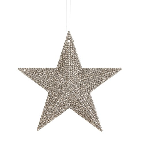 Creative Co-op Plastic Star Ornament with Gold Finish